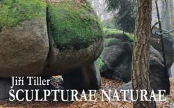 kio-sculpture-naturae